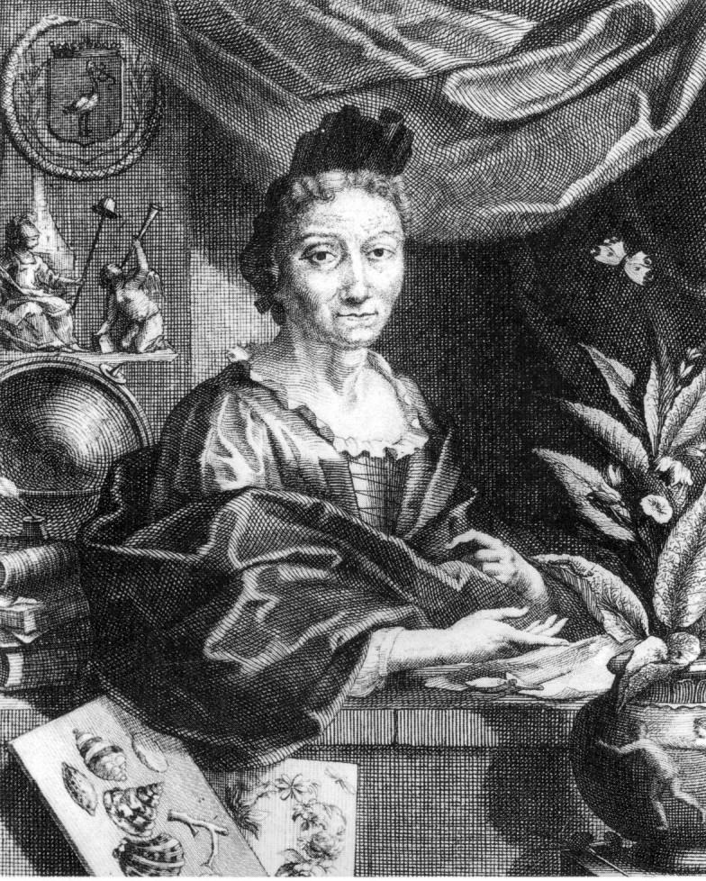 Maria Sibylla Merian um 1700.